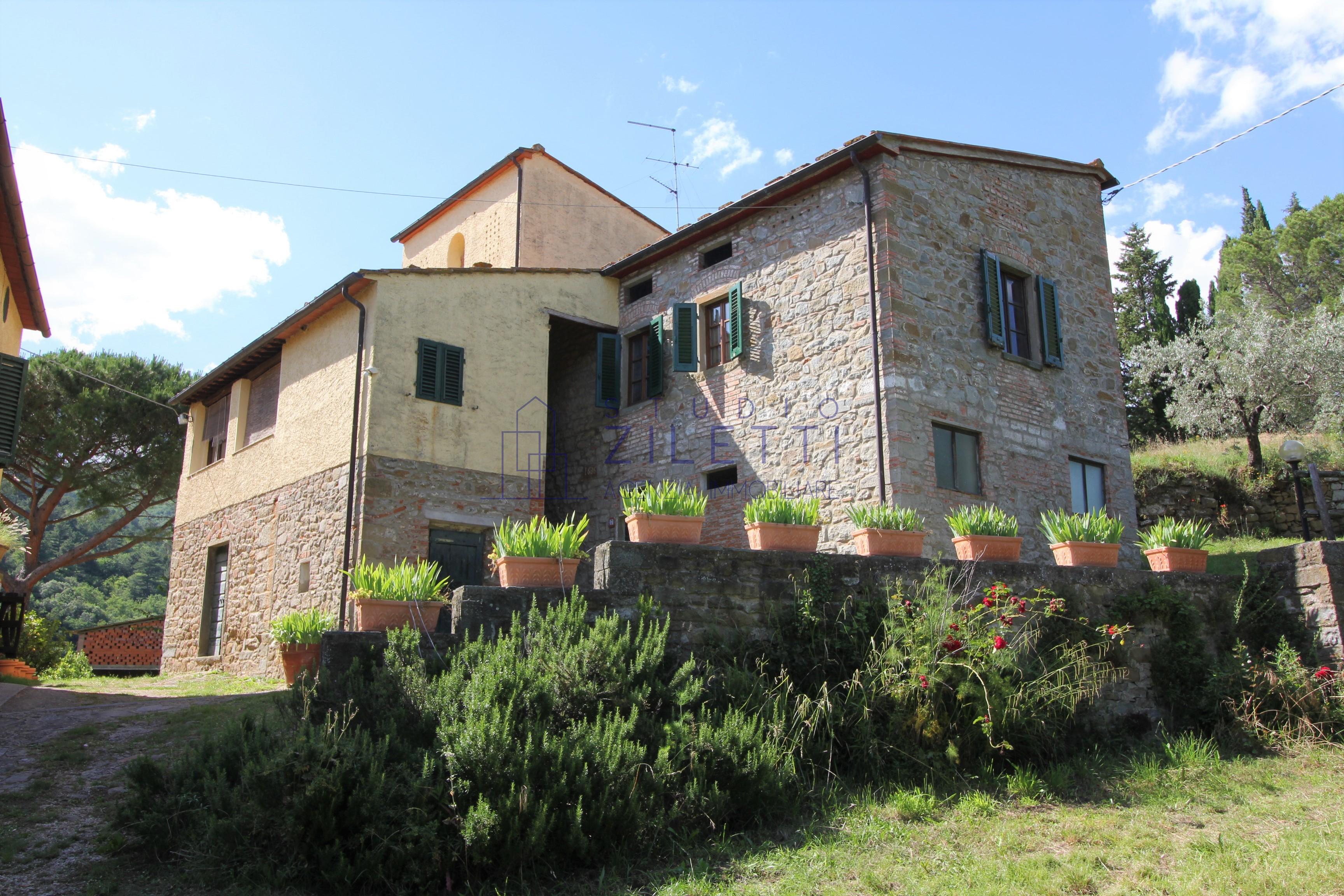 Splendida tenuta tra gli olivi nelle colline Toscane